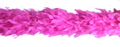 turkey feather boa available in 2 thicknesses in up to 40 colours